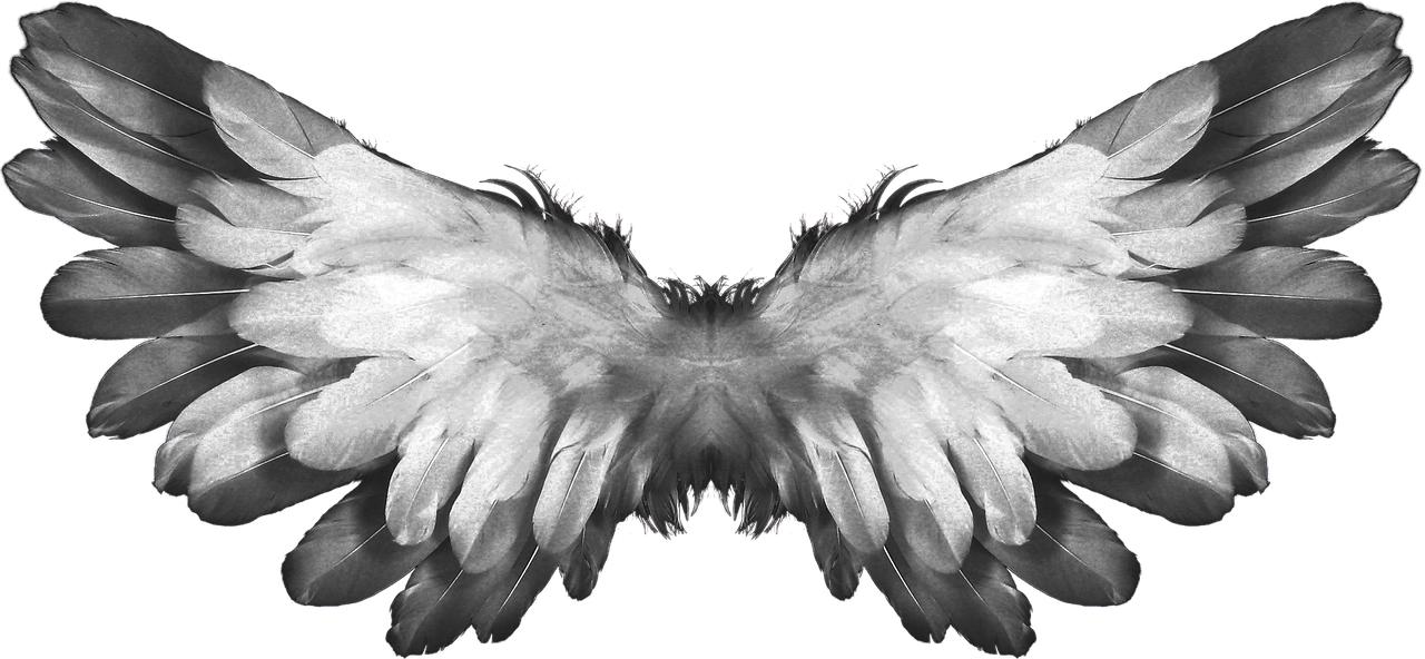 angel-1184180-1280-1