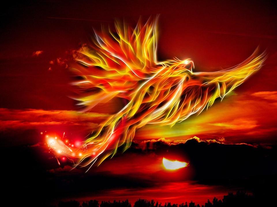 phoenix-500469_960_720-1