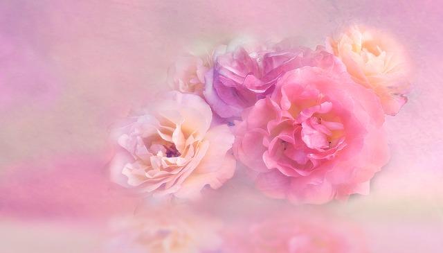 flower-3054806_640