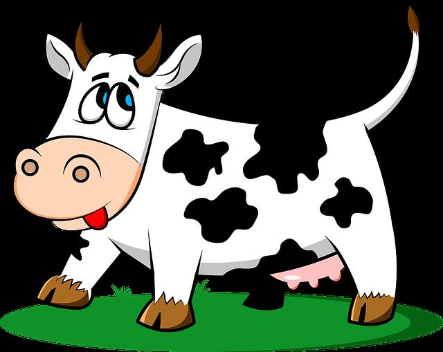 cow-1501690_640