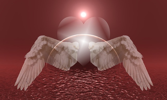 heart-669554_640-2