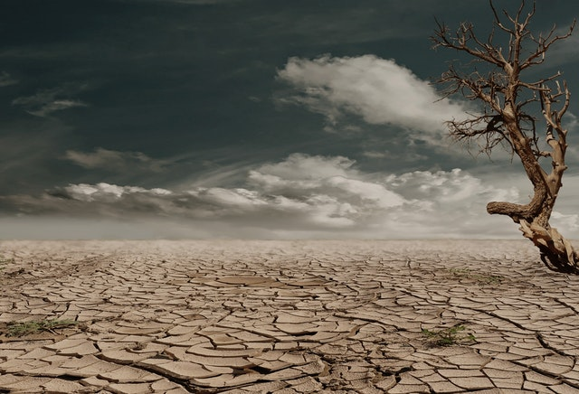 desert-drought-dehydrated-clay-soil-60013-1