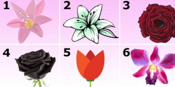 flower-test1-600x300-1