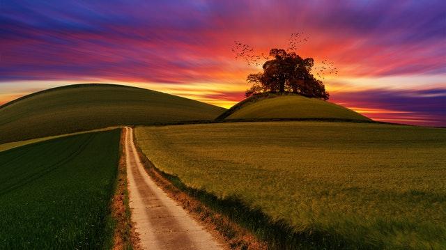 landscape-red-bella