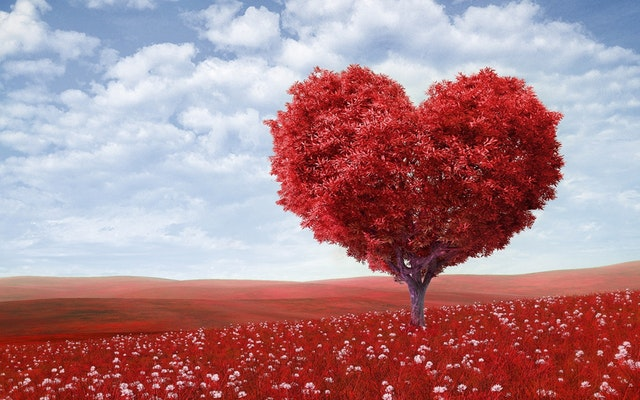 tree-heart-red