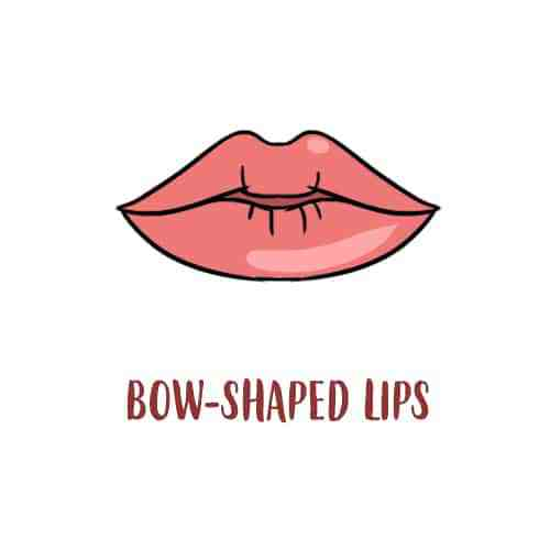 bow-shaped-lips