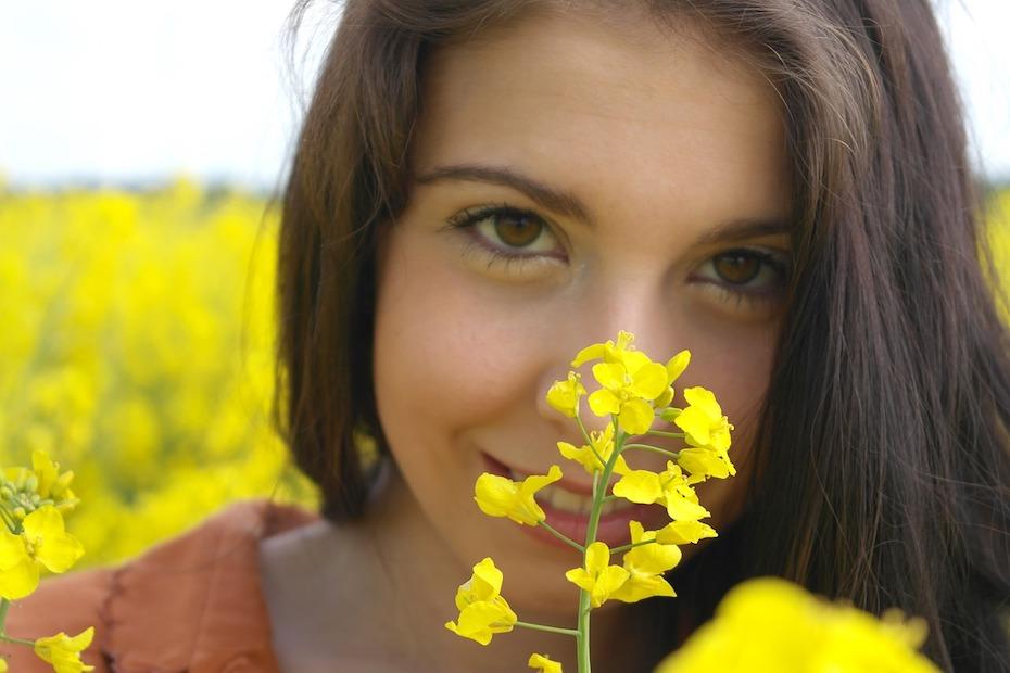 oilseed-rape-2426464_1280-1