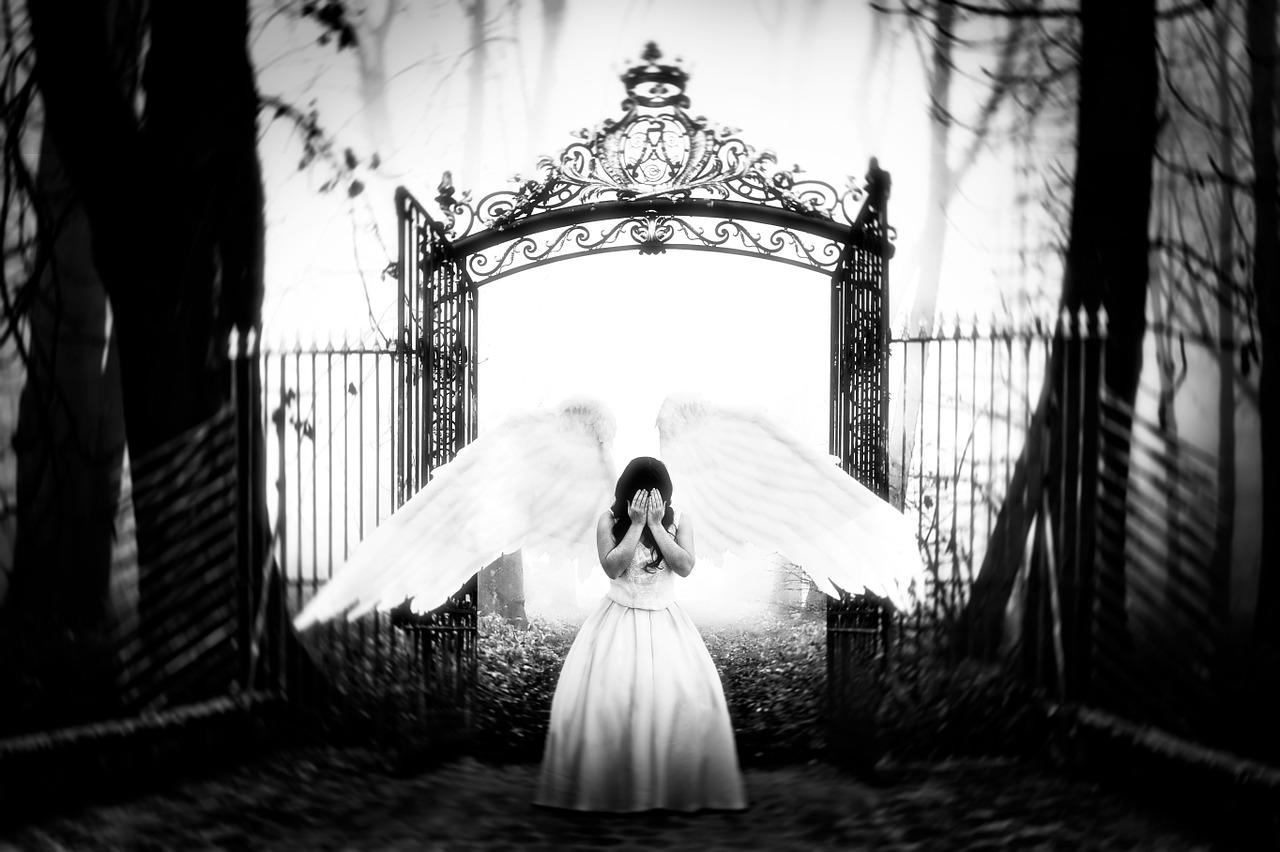 Flight-Paradise-Angel-Gate-1359143-1