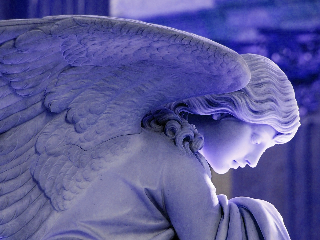angel-2909690_12801212