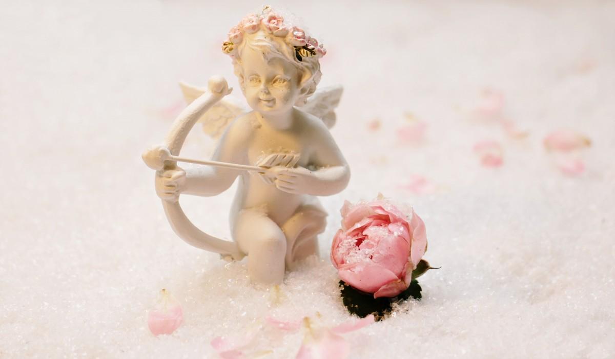 love_angel_angel_amor_figure_symbolism_feelings_luck_arrow-1378471