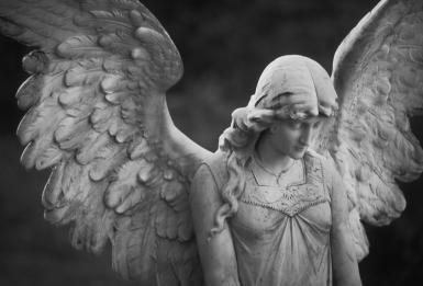 gi-beautiful-angel