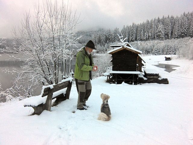 man-holding-a-snow-ball-in-winter-to-his-dog-staring-at-him-in-the-snow