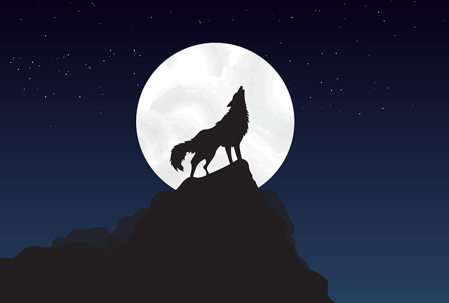 wolf-howling-at-full-moon