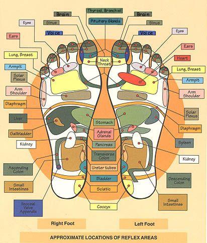 reflexology-foot-map