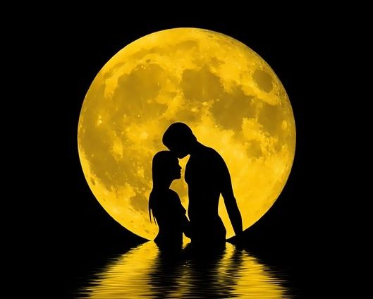 honey-moon-two-lovers