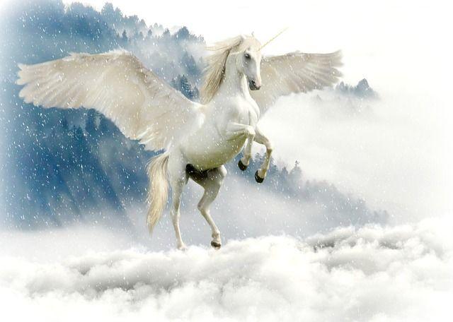 A Little Light On Unicorns