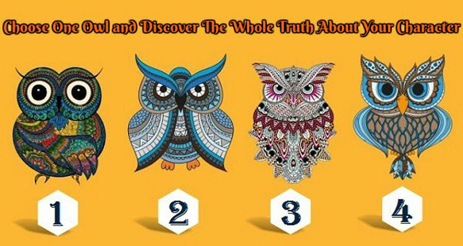 Discover The Whole Truth About Your Character From These Four Lovely Owls