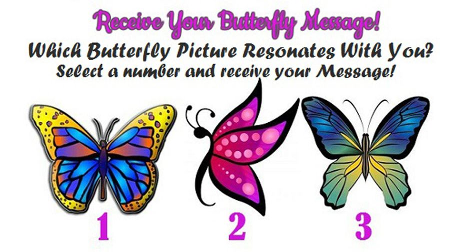 Receive a Beautiful Butterfly Message!