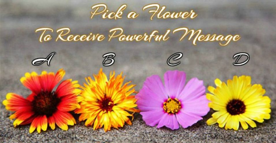 Pick a Flower to a Receive Powerful Message