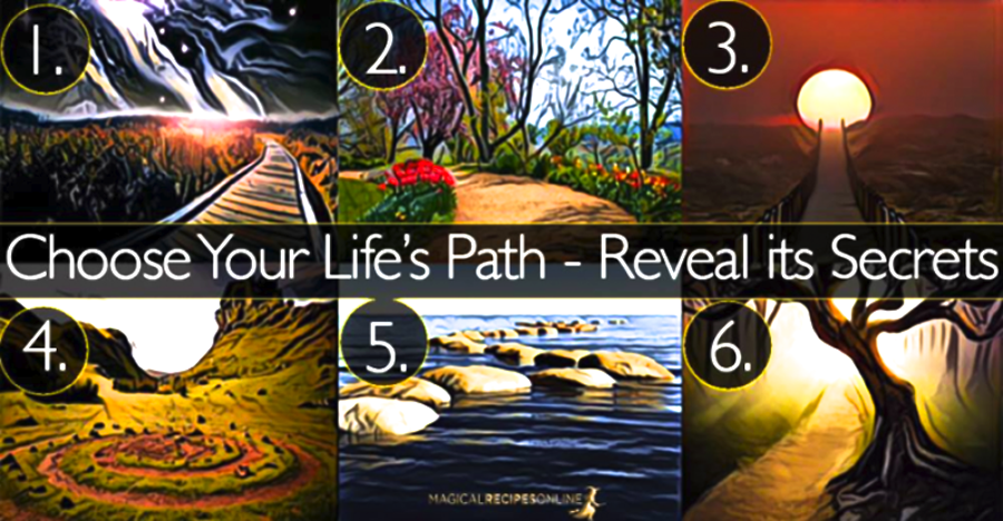 Your Favorite Path Reveals Your Life Philosophy
