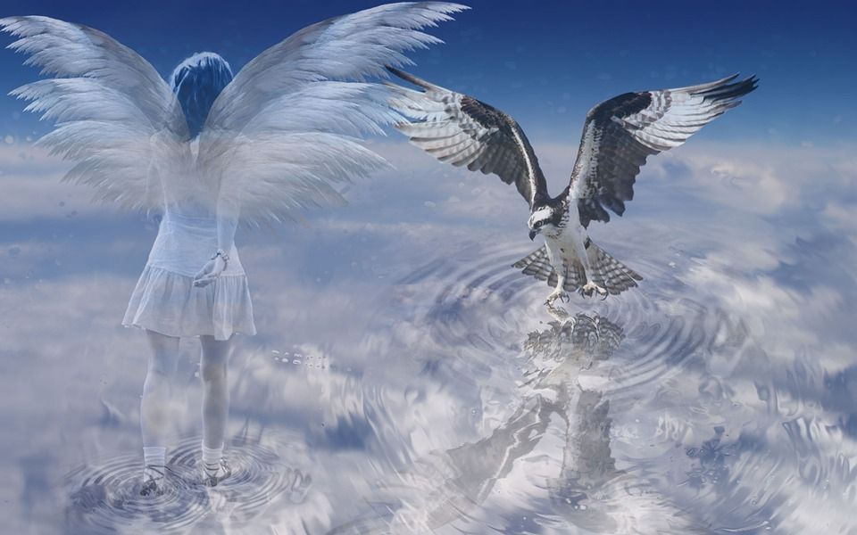 How to Talk to Angels, Spirit Guides and Your Celestial Team