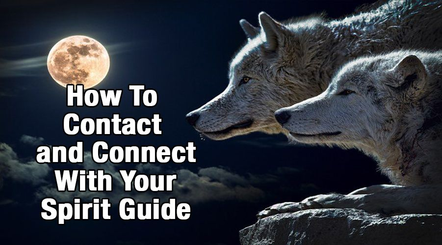 How To Contact and Connect With Your Spirit Guide