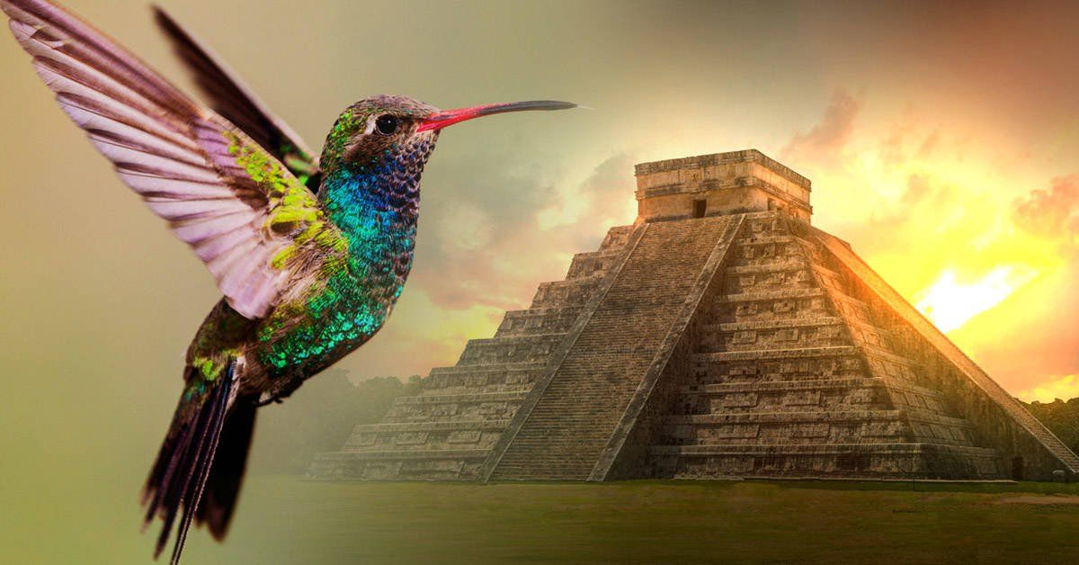 The Mayan Legend of the Hummingbird that Will Definitely Melt Your Heart