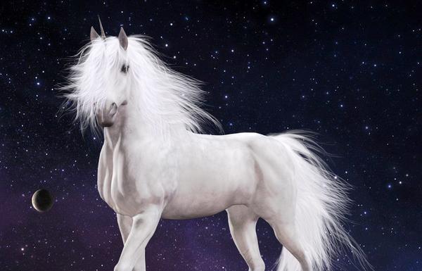 Unicorn, The Angelic Horse