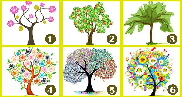 Select Your Favorite Tree To Find What Kind Of Person You Truly Are