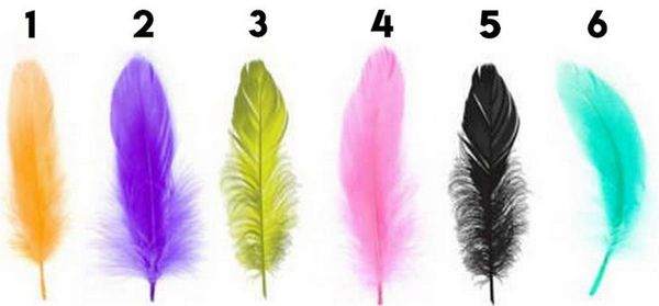 The Feather You Like The Most Reveals Your Secret Personality Trait!
