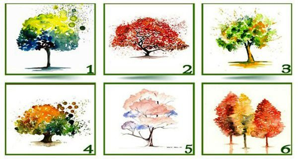 The Tree Test - Select Your Tree And Discover Your True Personality