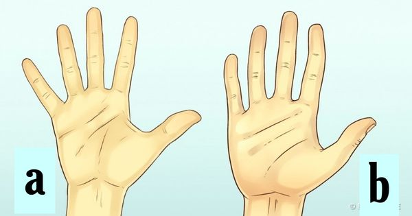 Test: Your Hand Size Says A Lot About Your Personality