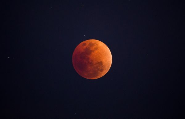 The Super Wolf Blood Moon Is Coming