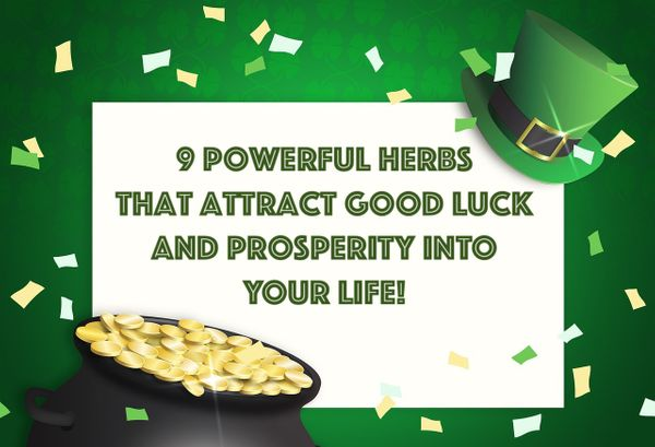 9 Powerful Herbs That Attract Good Fortune & Prosperity