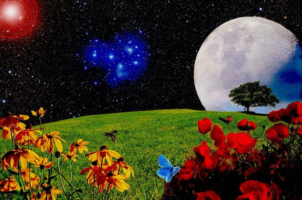 May 7 Full Flower Moon: The Supermoon that Makes Your Life Blossom!
