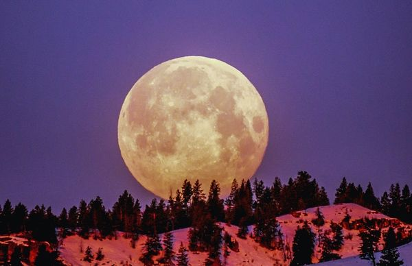 The First Full Moon of 2021 is Going to Kickstart Your Life!